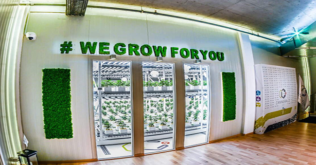 CannerGrow Front